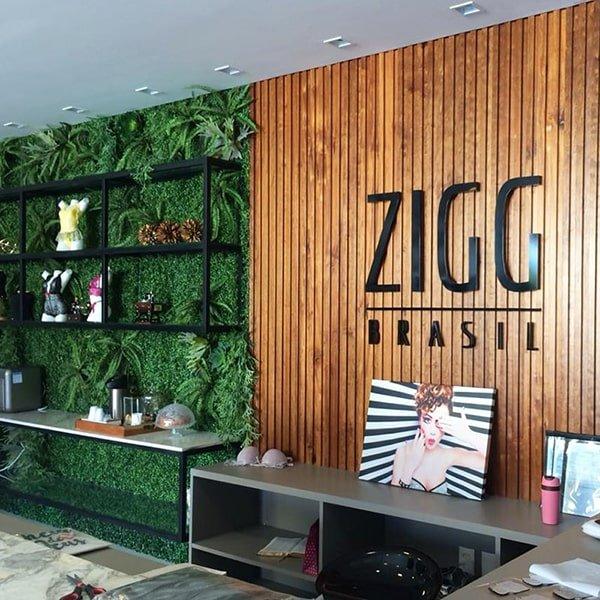 Loja Zigg Brasil